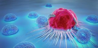 How Cancer Effect the Body