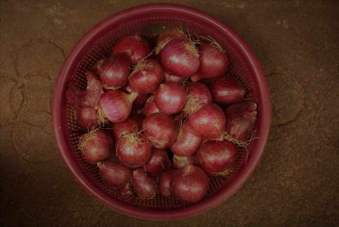 How to Store Onions?